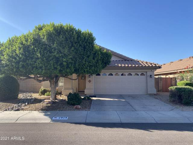 2029 E Angela Drive, Phoenix, AZ 85022 (MLS #6296923) :: Yost Realty Group at RE/MAX Casa Grande