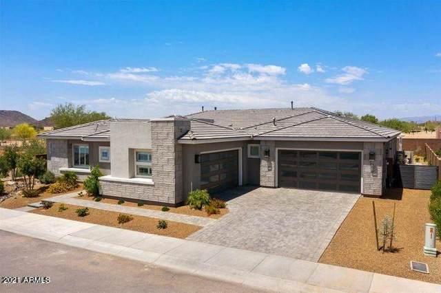 3222 E Harlow Drive, Phoenix, AZ 85050 (MLS #6296924) :: The Dobbins Team