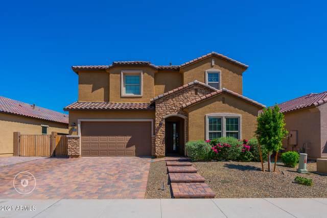 22433 N 101ST Avenue, Peoria, AZ 85383 (MLS #6296945) :: Yost Realty Group at RE/MAX Casa Grande