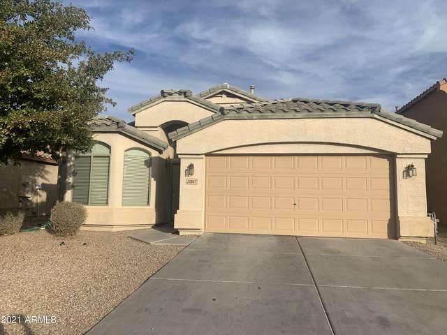 20847 N Mac Neil Street, Maricopa, AZ 85138 (MLS #6296953) :: Dijkstra & Co.