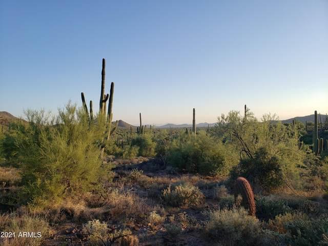 30XX E Rockaway Hills Road, Cave Creek, AZ 85331 (MLS #6296979) :: The Dobbins Team