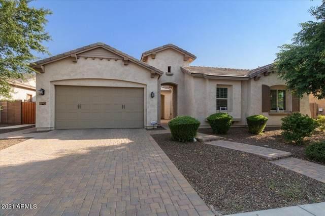 2975 E Longhorn Drive, Gilbert, AZ 85297 (MLS #6297000) :: The Daniel Montez Real Estate Group