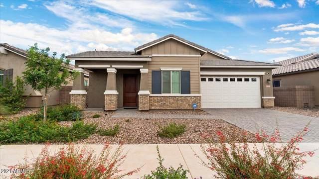 20511 E Mayberry Road, Queen Creek, AZ 85142 (MLS #6297005) :: Dijkstra & Co.