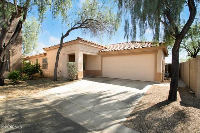 7500 E Deer Valley Road #179, Scottsdale, AZ 85255 (MLS #6297021) :: The Copa Team | The Maricopa Real Estate Company