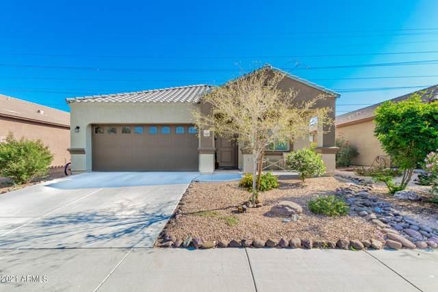 23807 W Magnolia Drive, Buckeye, AZ 85326 (MLS #6297027) :: Executive Realty Advisors
