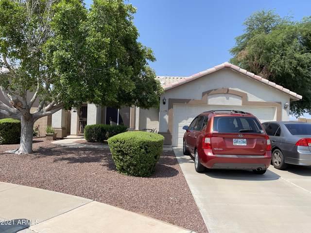 1146 S Cottonwood Court, Gilbert, AZ 85296 (MLS #6297039) :: Balboa Realty