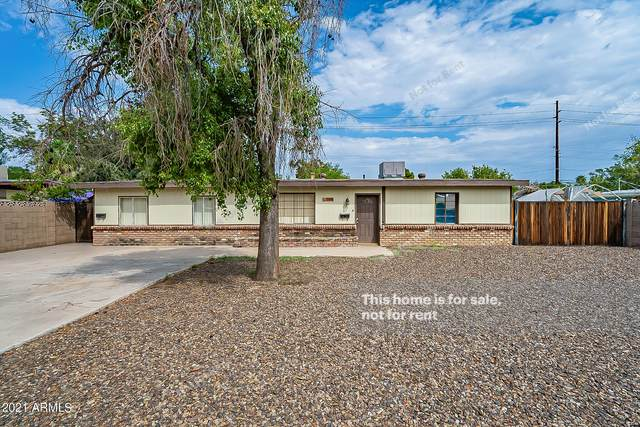2410 W Marshall Avenue, Phoenix, AZ 85015 (MLS #6297049) :: Yost Realty Group at RE/MAX Casa Grande