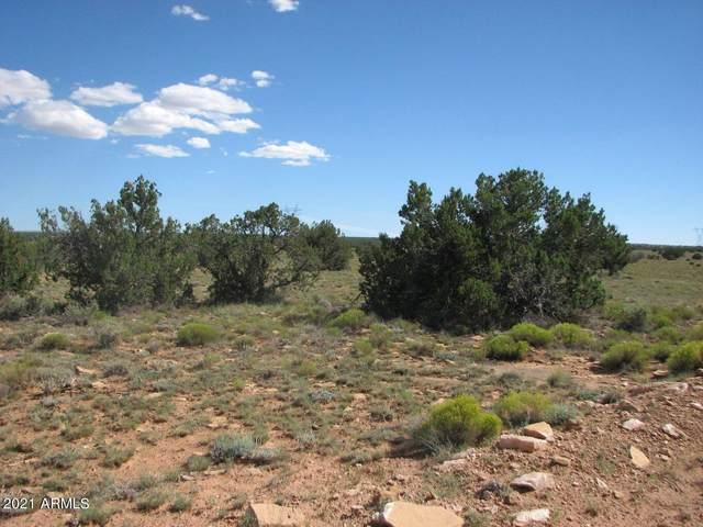 Lot 305 Chevelon Canyon Ranch, Heber, AZ 85928 (MLS #6297051) :: The Newman Team