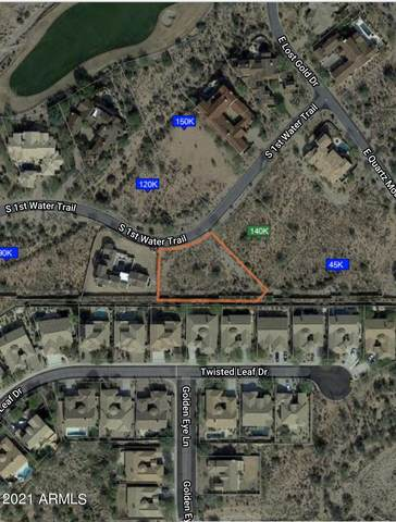 3475 S First Water Trail, Gold Canyon, AZ 85118 (MLS #6297109) :: Executive Realty Advisors