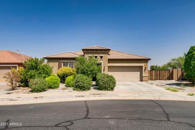 15814 W Fillmore Street, Goodyear, AZ 85338 (MLS #6297112) :: Elite Home Advisors