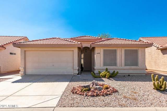 6620 S Coral Gable Drive, Chandler, AZ 85249 (MLS #6297135) :: Yost Realty Group at RE/MAX Casa Grande