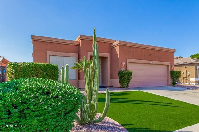 14912 N 153RD Avenue, Surprise, AZ 85379 (MLS #6297141) :: Devor Real Estate Associates