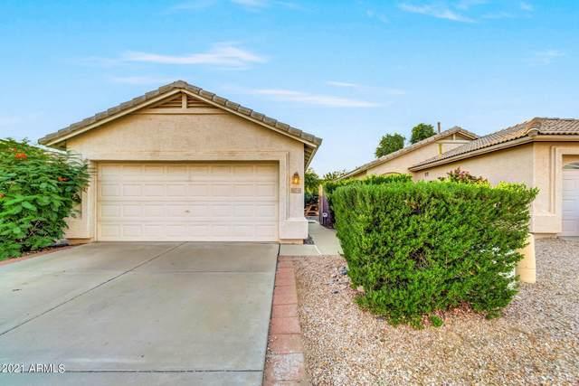 16218 S 47TH Street, Phoenix, AZ 85048 (MLS #6297151) :: Klaus Team Real Estate Solutions
