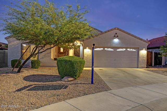 12527 S 175TH Avenue, Goodyear, AZ 85338 (MLS #6297173) :: The Copa Team | The Maricopa Real Estate Company