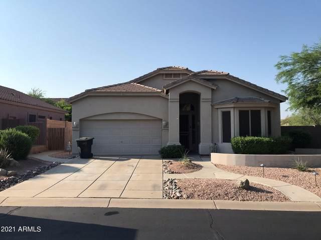 7451 E Odessa Circle, Mesa, AZ 85207 (MLS #6297175) :: The Copa Team | The Maricopa Real Estate Company