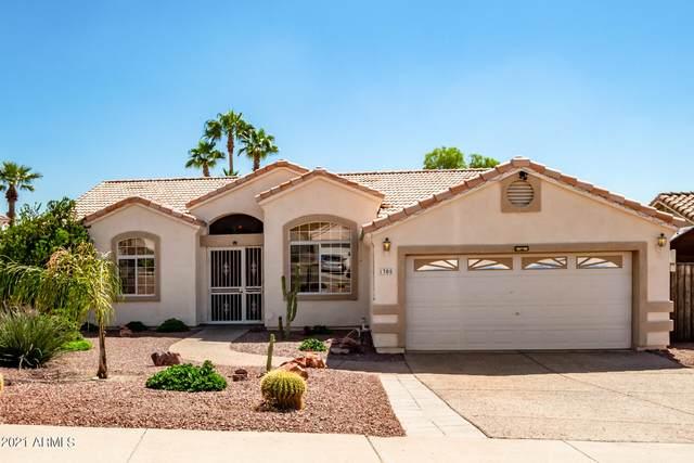 1305 E Michelle Drive, Phoenix, AZ 85022 (MLS #6297188) :: TIBBS Realty