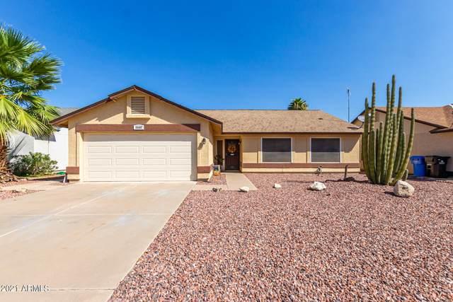 4506 E Briarwood Terrace, Phoenix, AZ 85048 (MLS #6297195) :: Power Realty Group Model Home Center