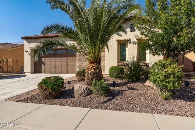1554 E Elysian Pass, Queen Creek, AZ 85140 (#6297196) :: The Josh Berkley Team