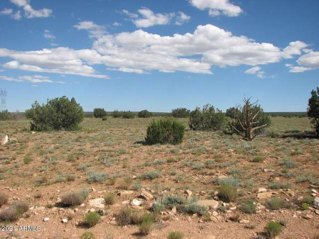Lot 306 Chevelon Canyon Ranch, Heber, AZ 85928 (MLS #6297231) :: Klaus Team Real Estate Solutions
