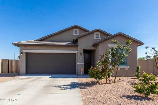 2625 S 119TH Drive, Avondale, AZ 85323 (MLS #6297243) :: Klaus Team Real Estate Solutions