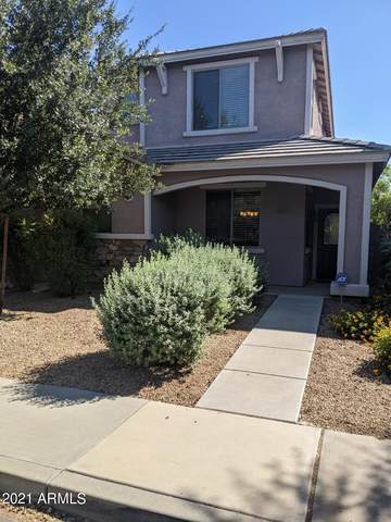 3725 E Kerry Lane, Phoenix, AZ 85050 (MLS #6297254) :: Team Faber