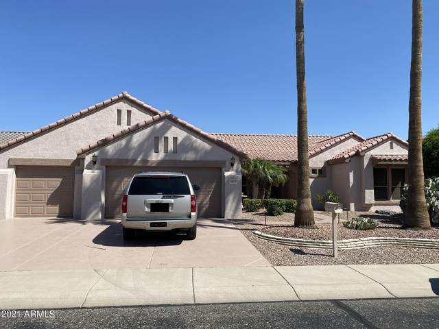 18039 N Petrified Forest Drive, Surprise, AZ 85374 (MLS #6297272) :: The Everest Team at eXp Realty