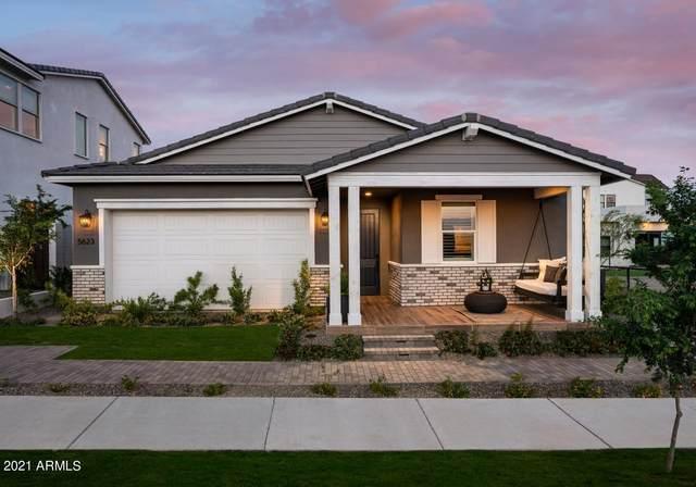 5623 S Feliz, Mesa, AZ 85212 (MLS #6297277) :: The Copa Team | The Maricopa Real Estate Company