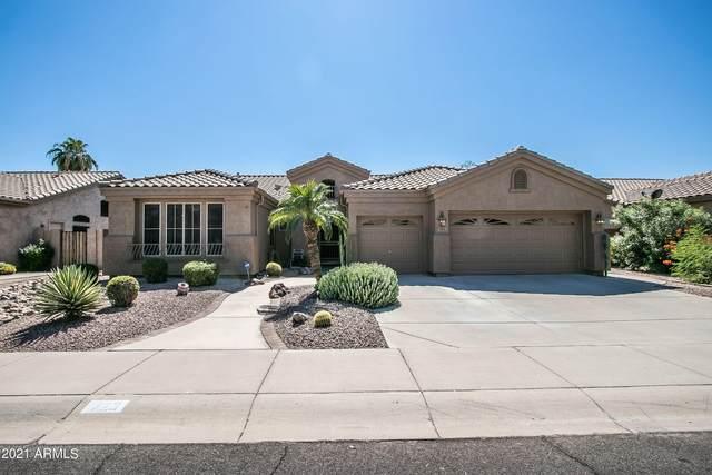 723 W Raven Drive, Chandler, AZ 85286 (MLS #6297282) :: Yost Realty Group at RE/MAX Casa Grande