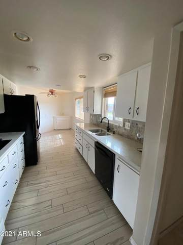 10216 W Pineaire Drive, Sun City, AZ 85351 (MLS #6297285) :: The Property Partners at eXp Realty