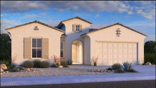 21127 W Edgemont Avenue, Buckeye, AZ 85396 (MLS #6297315) :: Executive Realty Advisors