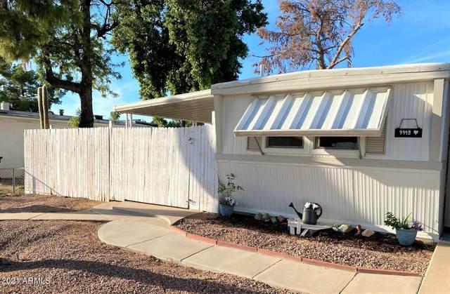 9448 E Emelita Avenue, Mesa, AZ 85208 (MLS #6297318) :: Elite Home Advisors