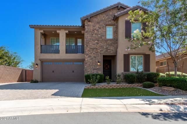 20365 E Reins Road, Queen Creek, AZ 85142 (MLS #6297319) :: Yost Realty Group at RE/MAX Casa Grande