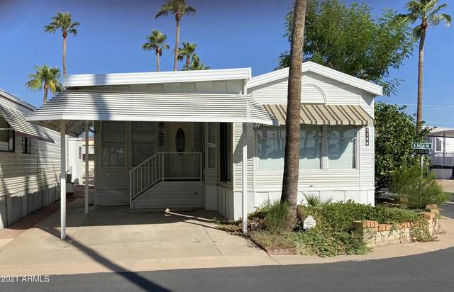 1146 S Sioux Drive, Apache Junction, AZ 85119 (MLS #6297321) :: Balboa Realty