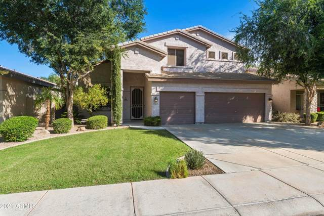1712 E Bruce Avenue N, Gilbert, AZ 85234 (MLS #6297326) :: NextView Home Professionals, Brokered by eXp Realty