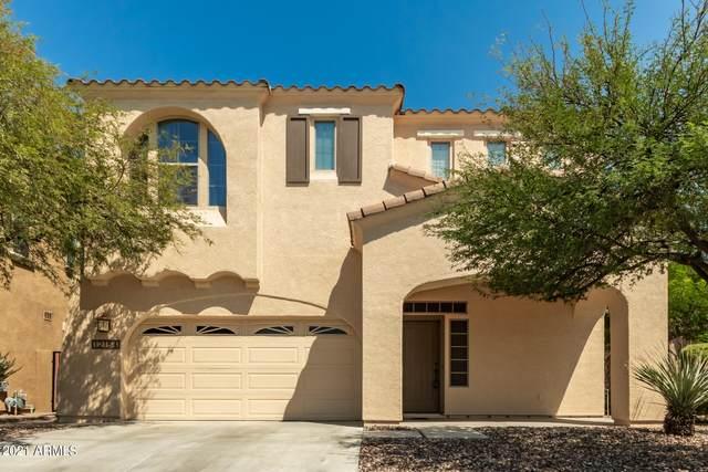 12154 W Lone Tree Trail, Peoria, AZ 85383 (MLS #6297332) :: Devor Real Estate Associates
