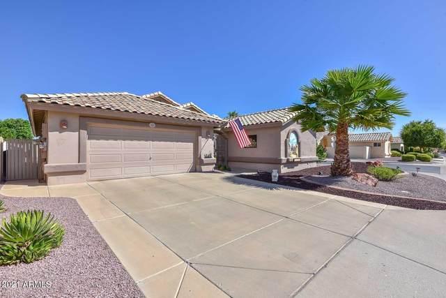 14302 W Shawnee Trail, Surprise, AZ 85374 (MLS #6297335) :: Devor Real Estate Associates