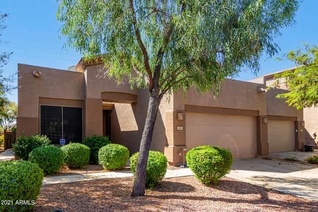 1459 W Marlin Drive, Chandler, AZ 85286 (MLS #6297398) :: Klaus Team Real Estate Solutions