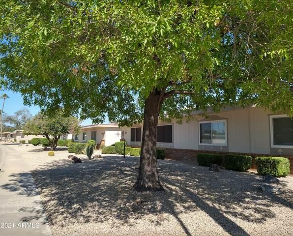 16655 N 102ND Avenue, Sun City, AZ 85351 (MLS #6297404) :: Elite Home Advisors