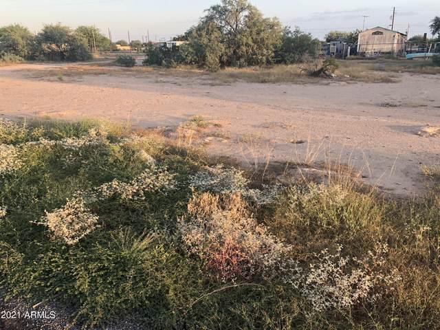 3115 W Trona Drive, Eloy, AZ 85131 (MLS #6297411) :: CANAM Realty Group