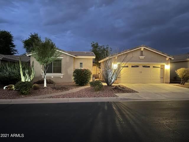 20285 N Enchantment Pass, Maricopa, AZ 85138 (MLS #6297426) :: The Property Partners at eXp Realty