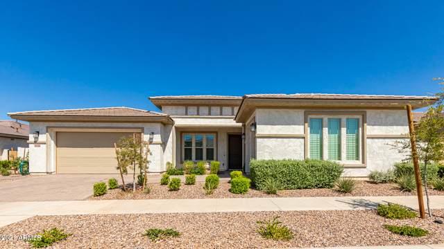 10536 E Thatcher Avenue, Mesa, AZ 85212 (MLS #6297446) :: The Riddle Group