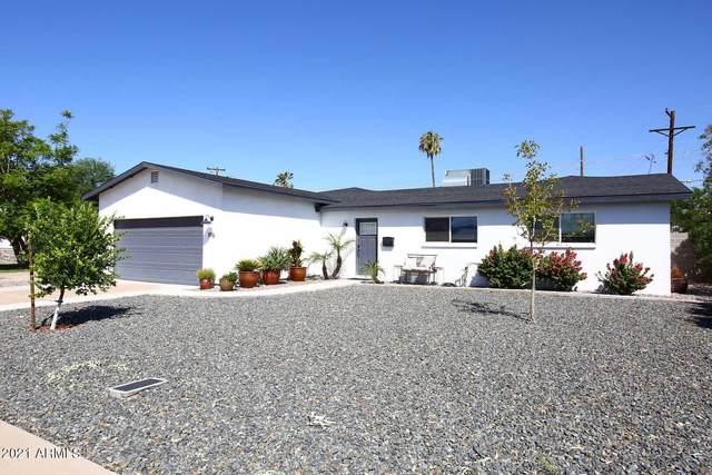 1916 E El Parque Drive, Tempe, AZ 85282 (MLS #6297456) :: Klaus Team Real Estate Solutions