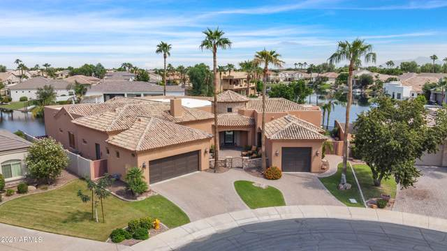3421 S Camellia Place, Chandler, AZ 85248 (MLS #6297467) :: CANAM Realty Group