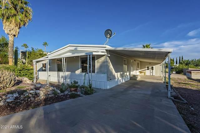 303 S Alta Vista Drive, Queen Valley, AZ 85118 (MLS #6297509) :: Executive Realty Advisors