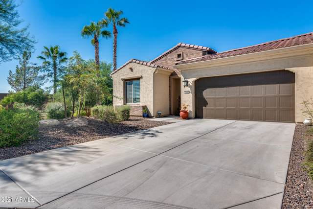 16958 W Holly Street, Goodyear, AZ 85395 (MLS #6297513) :: The Riddle Group