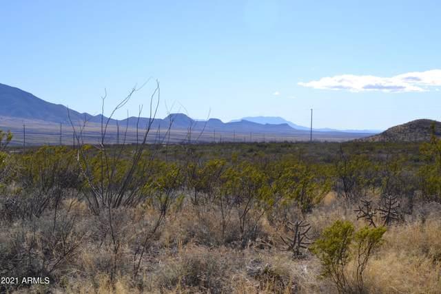 TBD 8 AC S Grande Vista Lane, Bisbee, AZ 85603 (MLS #6297521) :: CANAM Realty Group