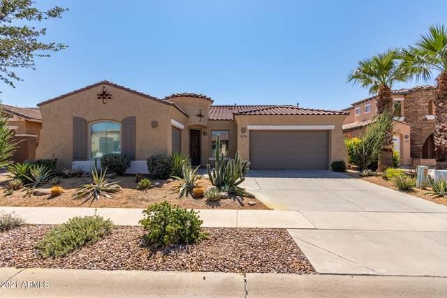 761 E Indian Wells Place, Chandler, AZ 85249 (MLS #6297536) :: The Daniel Montez Real Estate Group