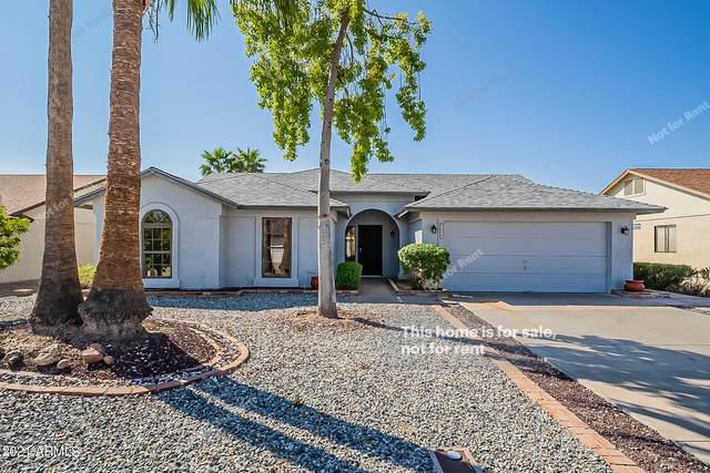 9133 W Mauna Loa Lane, Peoria, AZ 85381 (MLS #6297545) :: CANAM Realty Group
