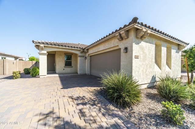 3060 E Patrick Street, Gilbert, AZ 85295 (MLS #6297550) :: TIBBS Realty