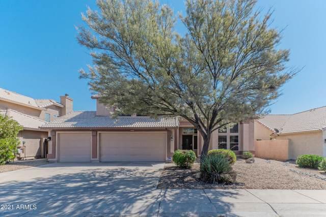 14825 S 43RD Place, Phoenix, AZ 85044 (MLS #6297554) :: The Riddle Group